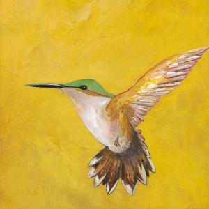 Sweet Hummingbird II by Mehmet Altug