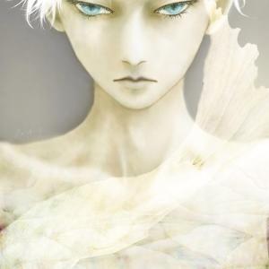 Weiss by Meiya Y