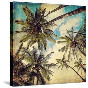 Kauai Island Palms by Melanie Alexandra Price