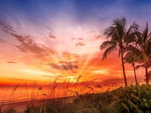 Bonita Beach Lovely Sunset by Melanie Viola