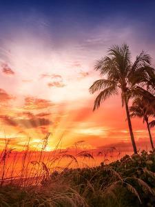 Bonita Beach Picturesque Sunset by Melanie Viola
