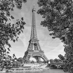 Eiffel Tower and River Seine Monochrome by Melanie Viola