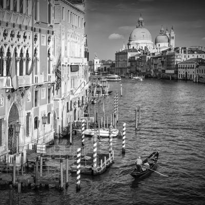 Venice Canal Grande & Santa Maria Della Salute by Melanie Viola