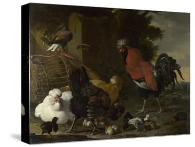 A Cock, Hens and Chicks, Ca 1668-1670