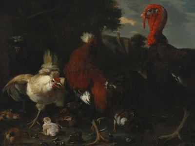 A Hen, Rooster and Turkey in a Farmyard