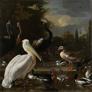 A Pelican and other Birds near a Pool, Known as 'The Floating Feather', c.1680 by Melchior de Hondecoeter