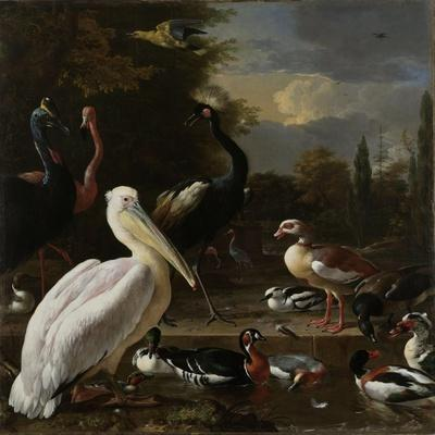 A Pelican and other Birds near a Pool, Known as 'The Floating Feather', c.1680