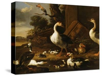 Chinese and Egyptian Geese and Other Birds in a Landscape with Ruins Nearby