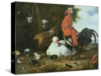 Farmyard Fowls with Pigeons