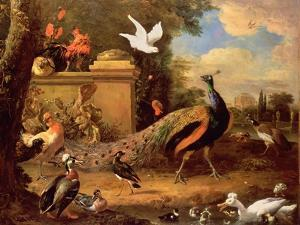 Peacocks and Other Birds by a Lake by Melchior de Hondecoeter