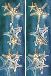 2-Up Starfish by Melinda Bradshaw