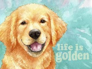 Life Is Golden Retriever by Melinda Hipsher
