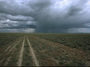 A Dirt Road Through Sagebrush Leads Towards a Distant Rain Storm by Melissa Farlow