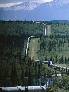 The Trans-Alaska Pipeline Cuts Through Wilderness Towards Mountains by Melissa Farlow