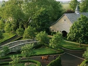 View of Barn and Grounds of Ashford Stud, a Prestigious Horse Farm by Melissa Farlow
