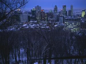 View of the Montreal Skyline from High Atop Mount Royal Park by Melissa Farlow