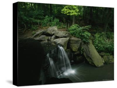 Water Splashes over a Waterfall in a Central Park Wood