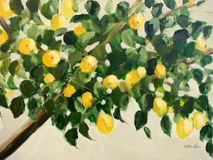 Lemon Tree by Melissa Lyons