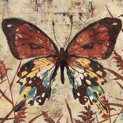 Butterfly Beauty 2
