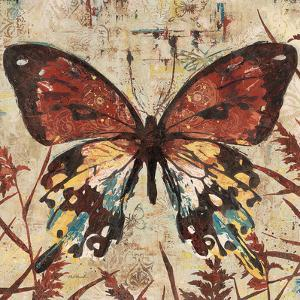 Butterfly Beauty 2 by Melissa Pluch