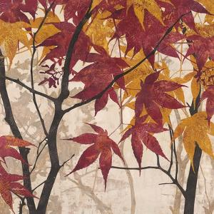 Maple Story 1 by Melissa Pluch