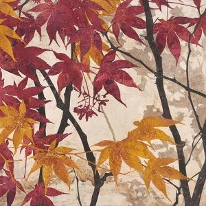 Maple Story 2 by Melissa Pluch
