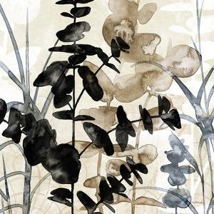 Natural Botanical 1 by Melissa Pluch