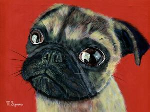 Pugly by Melissa Symons