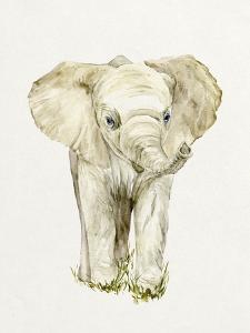 Baby Elephant II by Melissa Wang