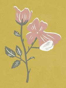 Blossom Bud II by Melissa Wang