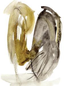 Calendula II by Melissa Wang