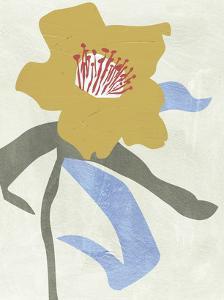 Lenten Rose I by Melissa Wang