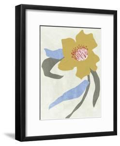 Lenten Rose II by Melissa Wang