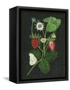 Strawberry Fields I by Melissa Wang
