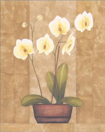 https://imgc.artprintimages.com/img/print/melodic-orchid-ii_u-l-epvkx0.jpg?p=0