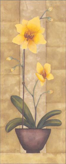 Melodic Orchid IV-Urpina-Art Print