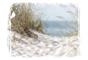 PrintCoastal Photography 4 by Melody Hogan
