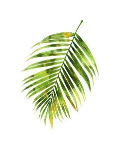 Palm I by Melonie Miller