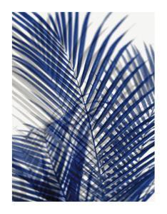 Palm Shadows Blue I by Melonie Miller
