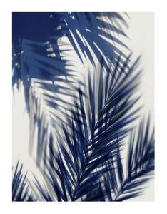 Palm Shadows Blue II by Melonie Miller