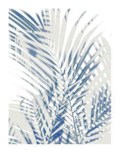 Palm Shadows  I by Melonie Miller