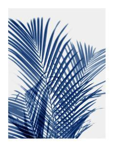 Palm Shadows Indigo I by Melonie Miller