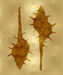 Sea Life - Gold II by Melonie Miller