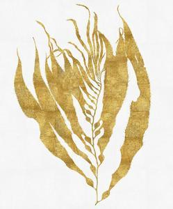Sea Life - Gold on White I by Melonie Miller