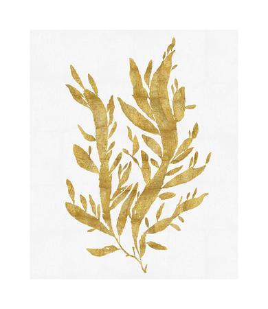 Sea Life - Gold on White IV