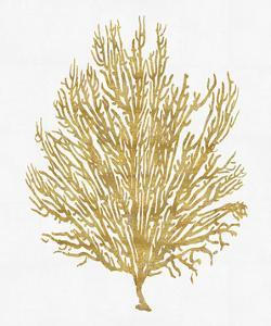 Sea Life - Gold on White V by Melonie Miller