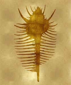 Sea Life - Gold VI by Melonie Miller