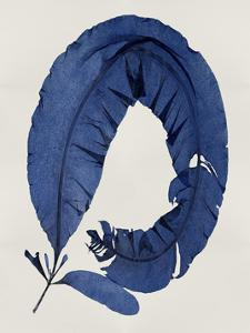 Sea Life - Indigo I by Melonie Miller