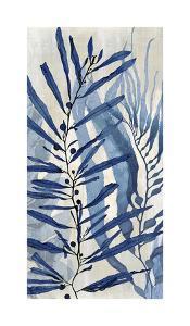 Sea Nature in Blue II by Melonie Miller