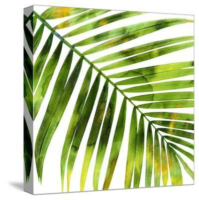Tropical Palm I